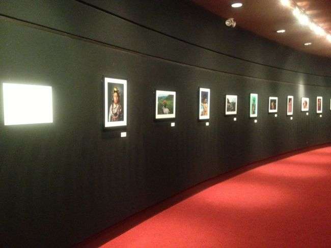 Alison Wright Exhibition